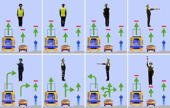 Сигналы и жесты регулировщика в картинках с пояснениями в 2018 году - для пешеходов и водителей, ПДД
