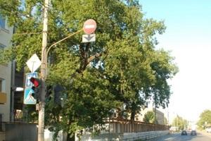 Когда ша проезд под запрещающий знак не выписывают штраф.